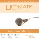 You Raise Me Up (Ampb: Selah) image