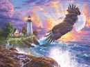 Puzzle: Soaring Lights (1000pc)