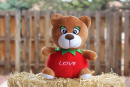 Love: The Apple Bear Plush