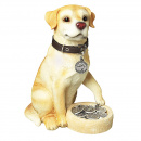 Dog Pet Medal Refills