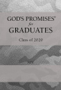 NIV God's Wisdom for the Graduate: Class of 2020  (Silver Camoflage)