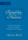 Raindrops from Heaven: Gentle Reminders of God's Power, Presence, and Purpose