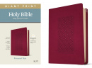 KJV Personal Size Giant Print Bible, Filament Enabled Edition (Diamond Frame Cranberry)