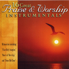 16 Great Praise and Worship Instrumentals, Vol. 1