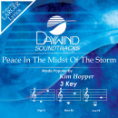 Peace In The Midst of The Storm image