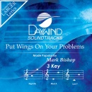 Put Wings Upon Your Problems