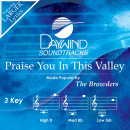 Praise You In This Valley image
